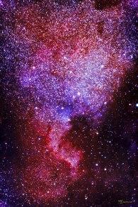 NGC7000. Nebulosa Norte América
